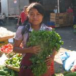 Figure 1 . A vendor holding chipilín for sale at a wholesale market in San Salvador El Salvador in 2010. (Photo by Frank Mangan)
