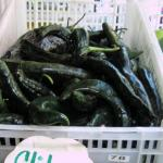 Chilaca peppers for sale at a market in Queens New York in 2007. (Photo by Frank Mangan)