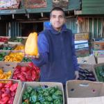 Figure 2. Green and colored bell peppers for sale at a wholesale market in Santiago Chile in 2010. Photo by Frank Mangan)
