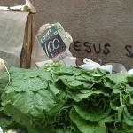 Collards for sale at an open air market in Rio de Janeiro (Foto by Frank Mangan)