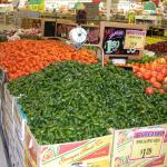 Figure 4. Jalapeño peppers for sale at a supermarket in Dallas Texas in 2000 (Photo by Frank Mangan)