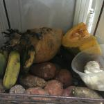 Figure 10. Viandas, including calabaza, stored in the shade in a kitchen in Havana Cuba in 2016 Photo by Frank Mangan)