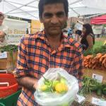 Figure 8. Customer from Berundi at a farmers' market in Worcester Mass. holding Jiló grown in Massachusetts in 2014. (Photo by Frank Mangan)