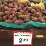 "Figure 1. White fleshed sweet potato, called ""Batata Hispana"", translating to Hispanic sweet potato, at a Latino market in Worcester in 2016. (Photo by Frank Mangan)"