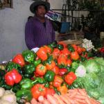 Figure 7. Green and colored bell peppers for sale at market in Morelia Mexico in 2007. (Photo by Frank Mangan)