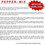 "Figure 9. Point-of-sales material used to promote ""heirloom"" Mexican hot peppers in non-Latino markets in Massachusetts in 2008 (Photo by Frank Mangan)"