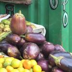 Figure 5. Eggplant for sale at a retail market in Havana Cuba in 2016. (Photo by Frank Mangan)