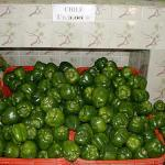 Figure 7. Green bell peppers for sale at market in the countryside of Honduras in 2002. (Photo by Frank Mangan)