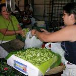 Lorroco being sold at a market in San Salvador, El Salvador.