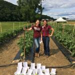 Figure 12. Aline Marchese and Zoraia Barros in a variety trial of jiló at the UMass Research Farm on July 29, 2015. Photo by Frank Mangan)