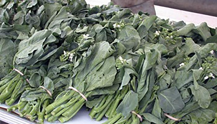 Chinese broccoli, grown in Lancaster, Mass., for sale at a farmers' market in Boston, Mass. (Photo by Frank mangan)