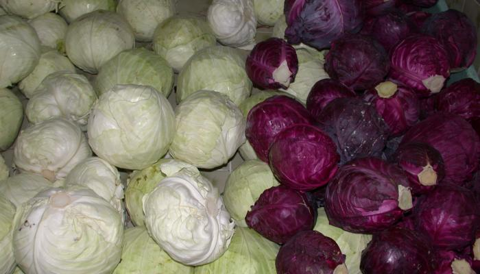 Cabbage for sale at a market in Honduras in 2006. (Photo by Frank Mangan)