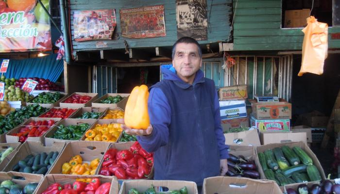 Bell peppers for sale at a wholesale market in Santiago Chile in 2010 Photo by Frank Mangan)