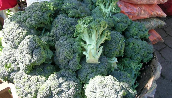 Broccoli for sale at a wholesale market in El Salvador in 2005. (Photo by Frank Mangan)