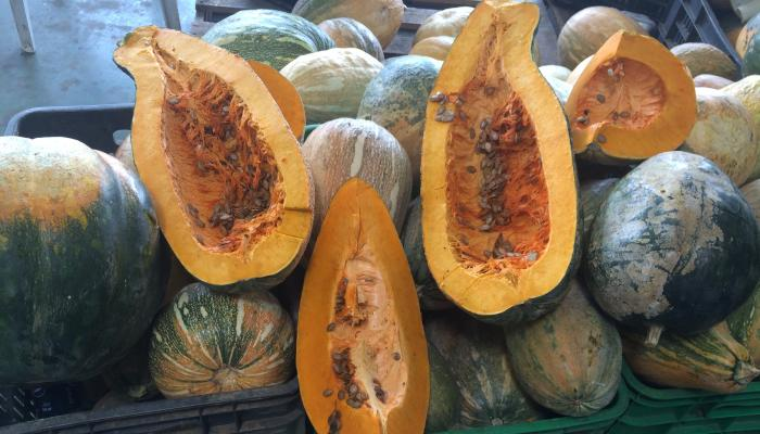 Calabaza for sale at a market in the Dominican Republic in 2015. (Photo by Frank Mangan)