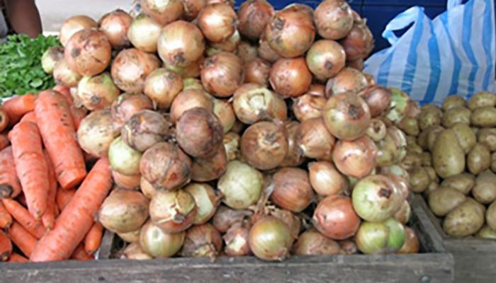Onions for sale at a market in Siquirres Costa Rica. (Photo by Frank Mangan)