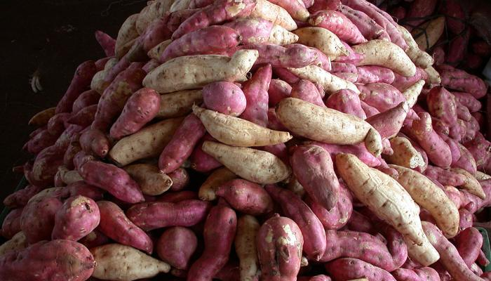 Sweet potato at a terminal market in Sao Paulo, Brazil in 2009. (Photo by Frank Mangan)