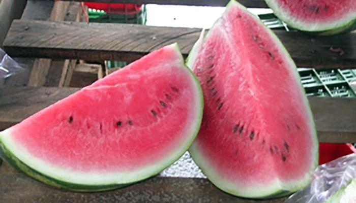 Watermelon for sale at a market in Siquirres Costa Rica (Photo by Frank Mangan)